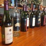 Rothbury vineyards