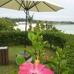 ホテルの庭からビーチの眺めも良いです