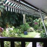 Le jardin vu depuis notre table