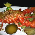 Lobster-Limani Westfield NJ