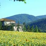 Photo de Agriturismo Montioni