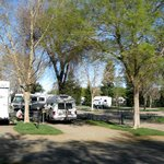 Almond Tree RV Park - Chico