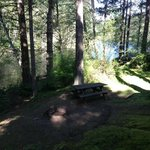 Private picnic area, with fire pit, next to the lake