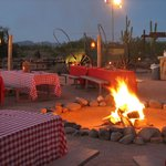 Arizona's Desert Events Desert Tours