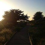 Walking trail along the beach.