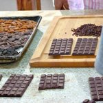 Chocolate making, new Agritourism center, chocolate building