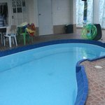The pool with a view to the ground floor bathroom and door leading to indoor living/dining quart