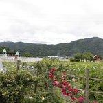 Photo of Hotel Saito
