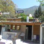 Photo de Akdeniz Restaurant