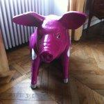 Le cochon rose !!!