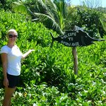 ON THE WAY TO THE BEACH OF PETITE ANSE AND GRANSE ANSE, IN APRIL 2013.