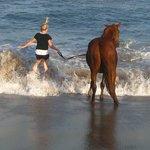Little girl enjoying swimming with her horse
