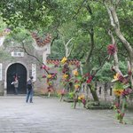 Flowers at the entrance of the Tianxin tower, Changsha
