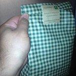 free complimentary goodies bag