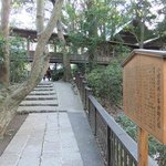 小田原城址公園10