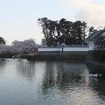 小田原城址公園03