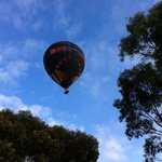 Hot air balloon floated by one morning