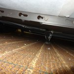 Debris under the beds