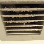 Bathroom Vent. Absolutely revolting!