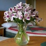 Suite Flowers