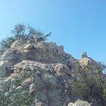 The Rock (Emory Peak)