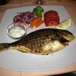 Photo of Zum Zum Restaurant