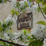 Krumlov House in springtime