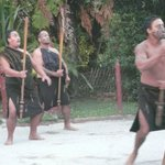 The Maori welcome!