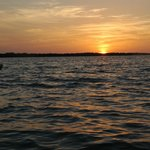 Sunset Rookery Bay
