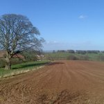 Open fields to the front