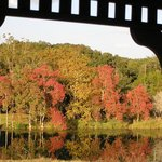 View of the fall colors across the lake