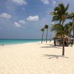 Zdjęcie Bucuti & Tara Beach Resort Aruba
