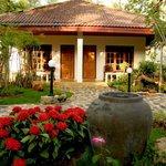 Tropica bungallow and garden