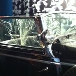 American soldiers shot up the window when they found the car