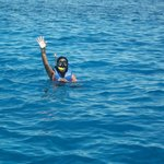 Red Sea Snorkelling in Sharm El Sheikh
