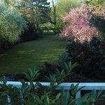 Parkähnlicher Garten von der Zimmerterasse