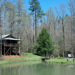 View of pond and cabin 8. April 12, 2013