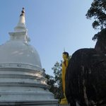 Buddha of the Rocks