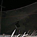 Shield netting is in poor repair.
