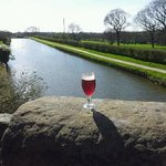 perfect cherry beer at Top Lock