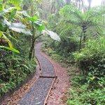 Sendero Youth Challenge Trail