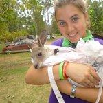 me and a baby kangaroo at KROOOMBIT!