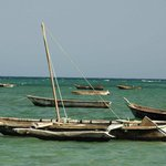 Fishing boats mooring in front of the restaurant