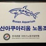Busan Aquarium; 15-20 min walk along the waterfront; nice
