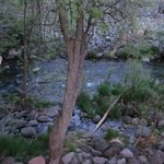 Stream near the timeshare where hotel guests are allowed