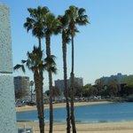 Beach view Marina del Rey