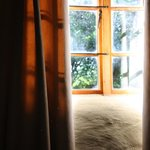 light in the room