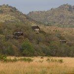 Tshukudu Lodge in Pilanesberg