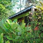 un très joli bungalow