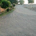 Foto de Hacienda Los Algodones